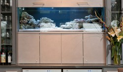 Integrated Fish Tank with lamiwood bi fold doors opening through to kitchen servery.